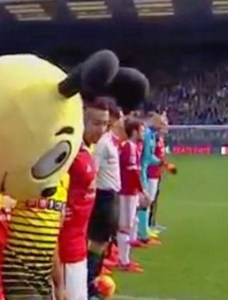 Watford football club's mascot, Harry the Hornet, during the minute's silence for Paris. Sadness in his eyes.